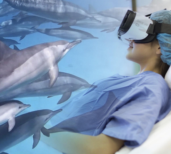 Virtual Reality therapy with wild dolphins
