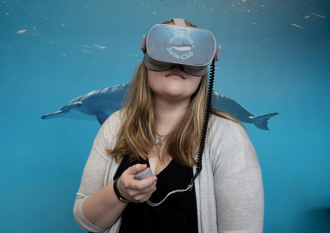 Virtual dolphins help students relax before exams